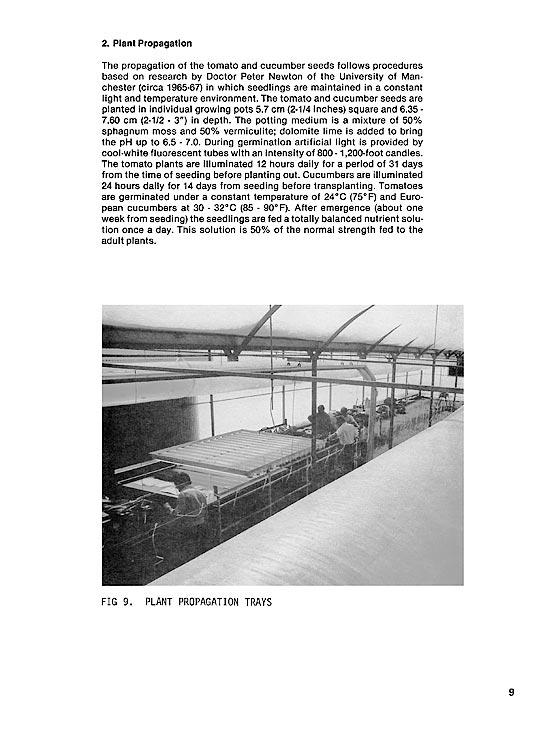 Princess Greenhouse - propagation.